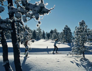 Cross-country skiing on the Langis